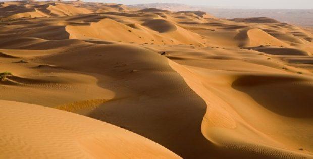 Mineral sands producer