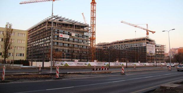 nz-gov-national-loggerheads-construction